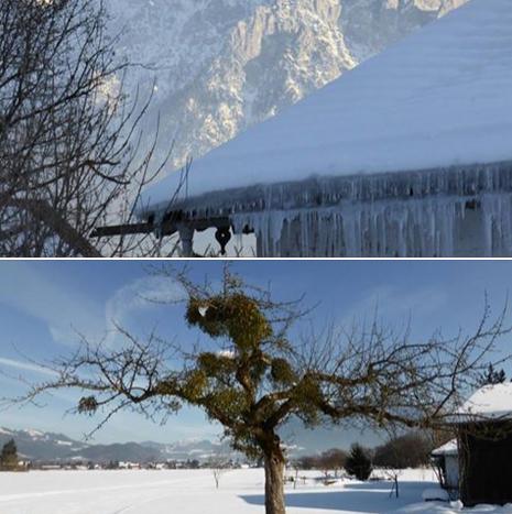 Glücksgefühle beim Winterausflug