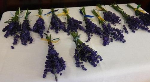 Lavendelsträußchendank an mein Vortragspublikum :-)
