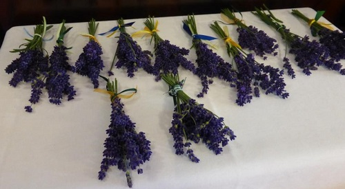 Lavendelsträußchen