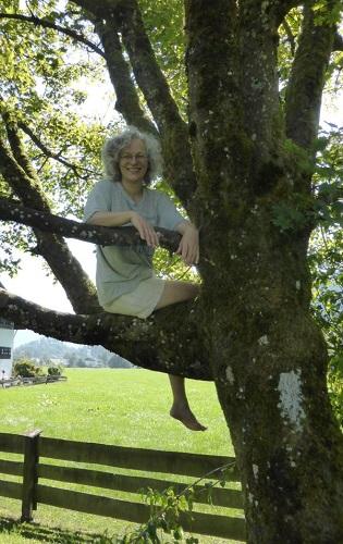 Stolze Grüße vom Kletterbaum oder Mach mal wieder was ganz altes Schönes oder was ganz Neues!