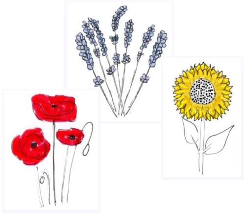 """Blick in den """"Wohlfühlgarten"""" auf """"Lavendel"""", """"Mohnblume"""" und """"Sonnenblume"""": die drei Varianten meines Onlinekurses"""