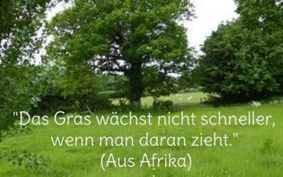 """""""Das Gras wächst nicht schneller …"""" (Seelenbalancieren-""""Postkarte"""")"""